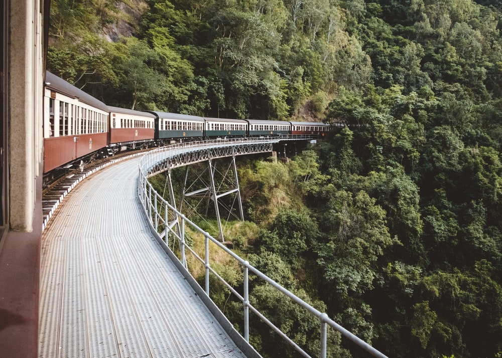 photo of brown, green, and white train near green leaf trees