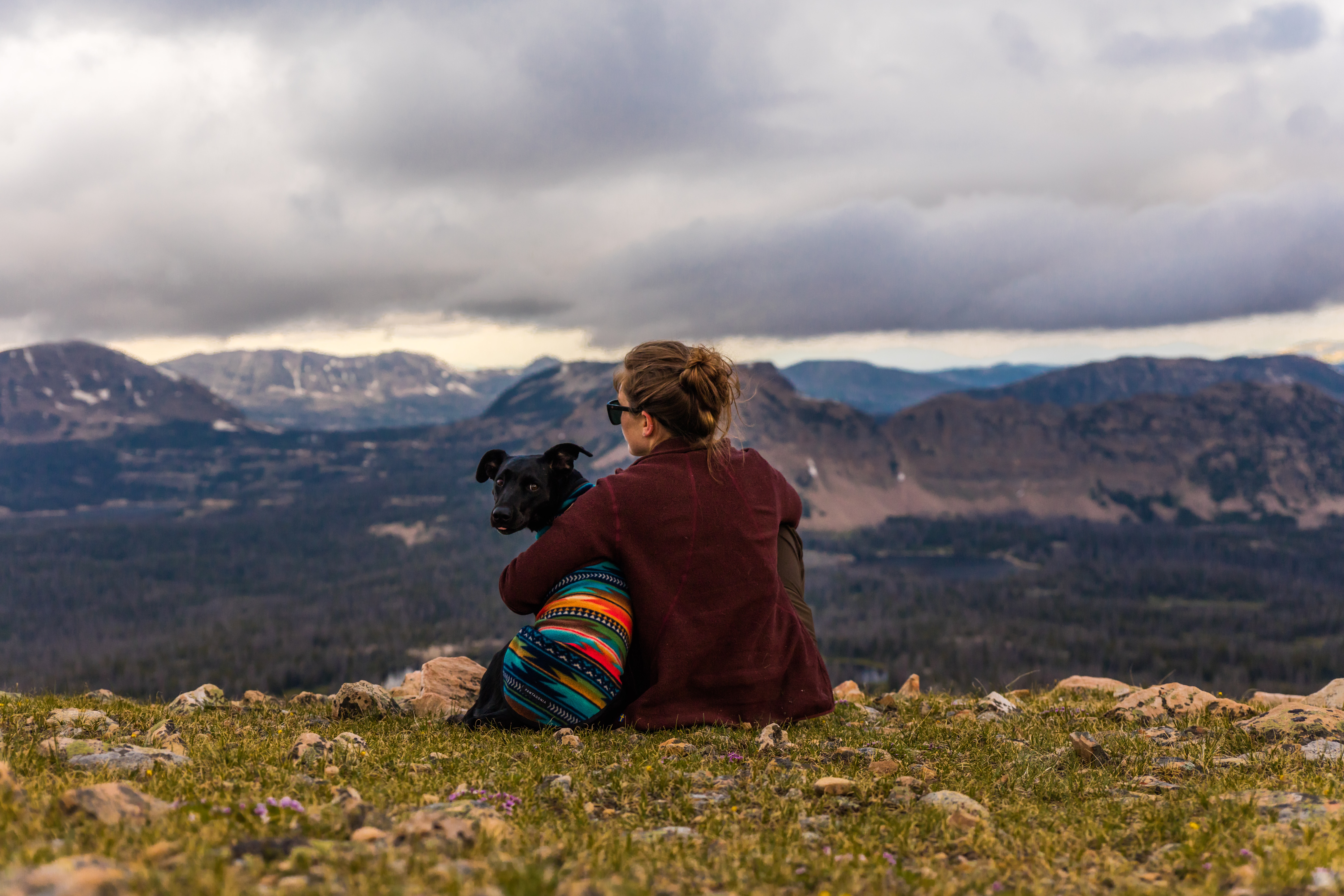 woman sitting near dog on cliff overlooking mountains and forest during daytime