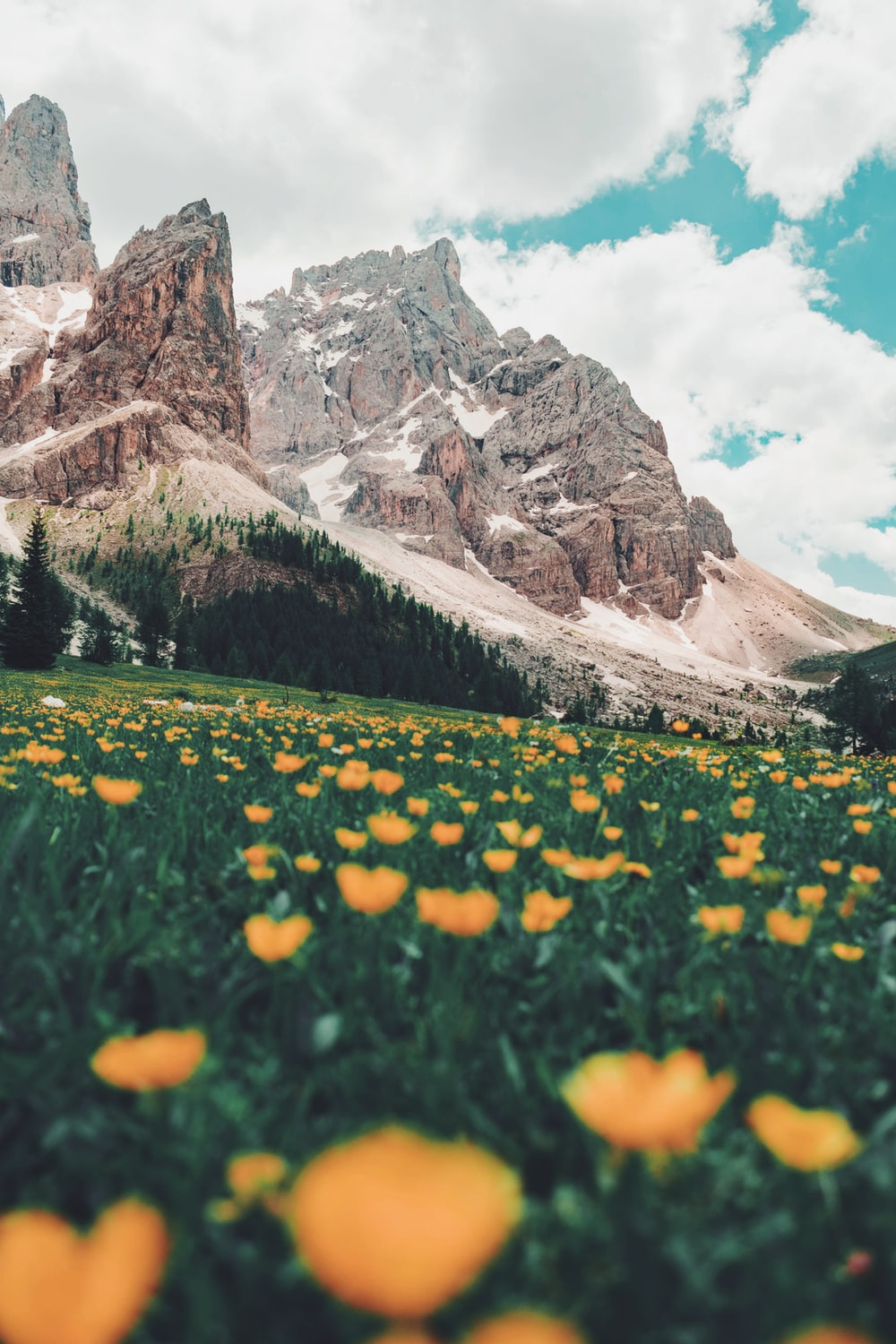 900 Nature Background Images Download Hd Backgrounds On Unsplash