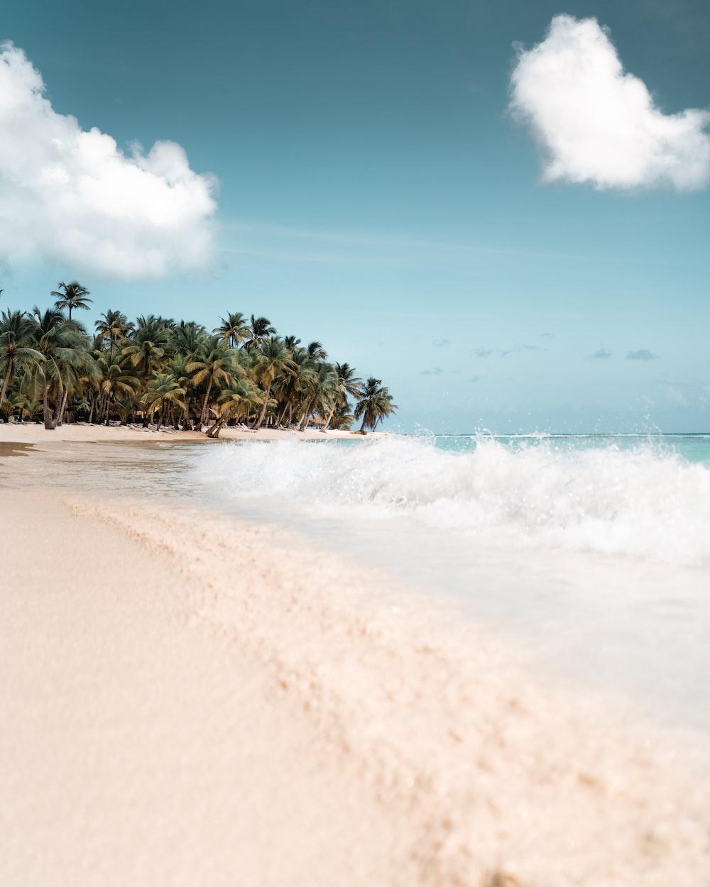 long exposure photography of beach