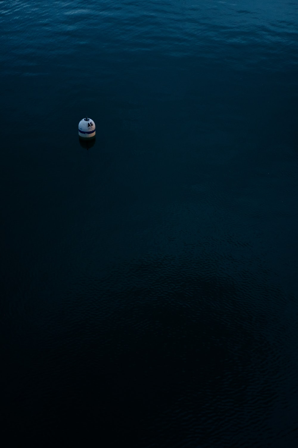 white toy floating on body of water