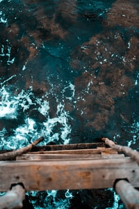 top-view photography of brown wooden ladder and body of water