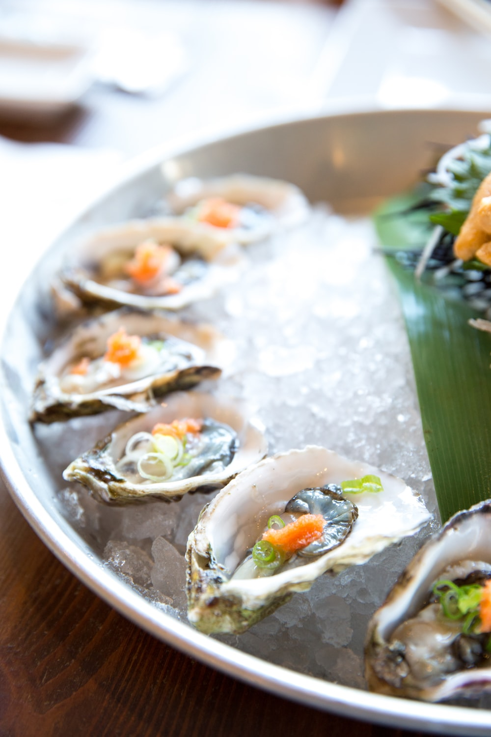 oyster on ice