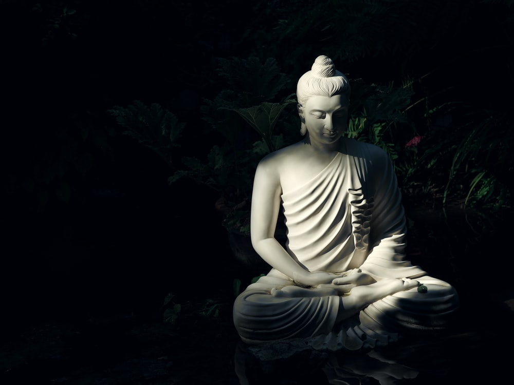 white Buddha statue on body of water