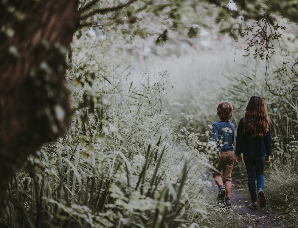 girl and boy walking on forest trail