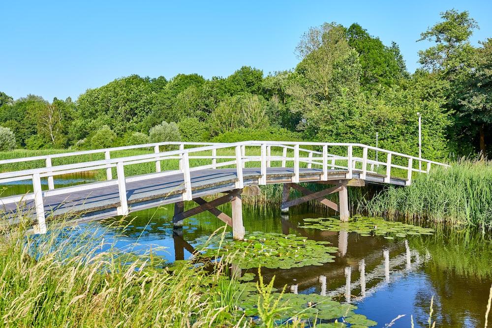 gray and white wooden bridge under blue sky