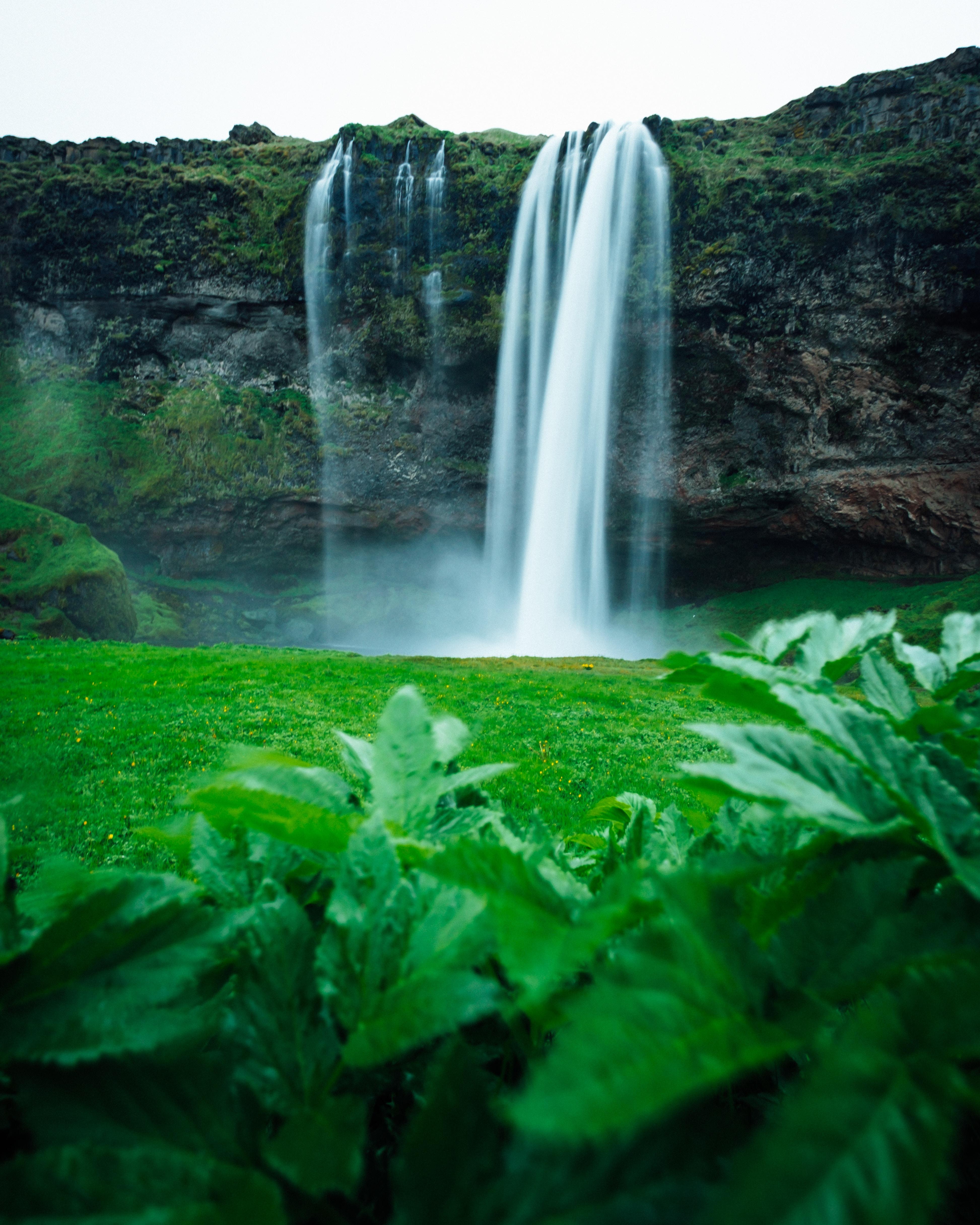 macro shot of waterfalls