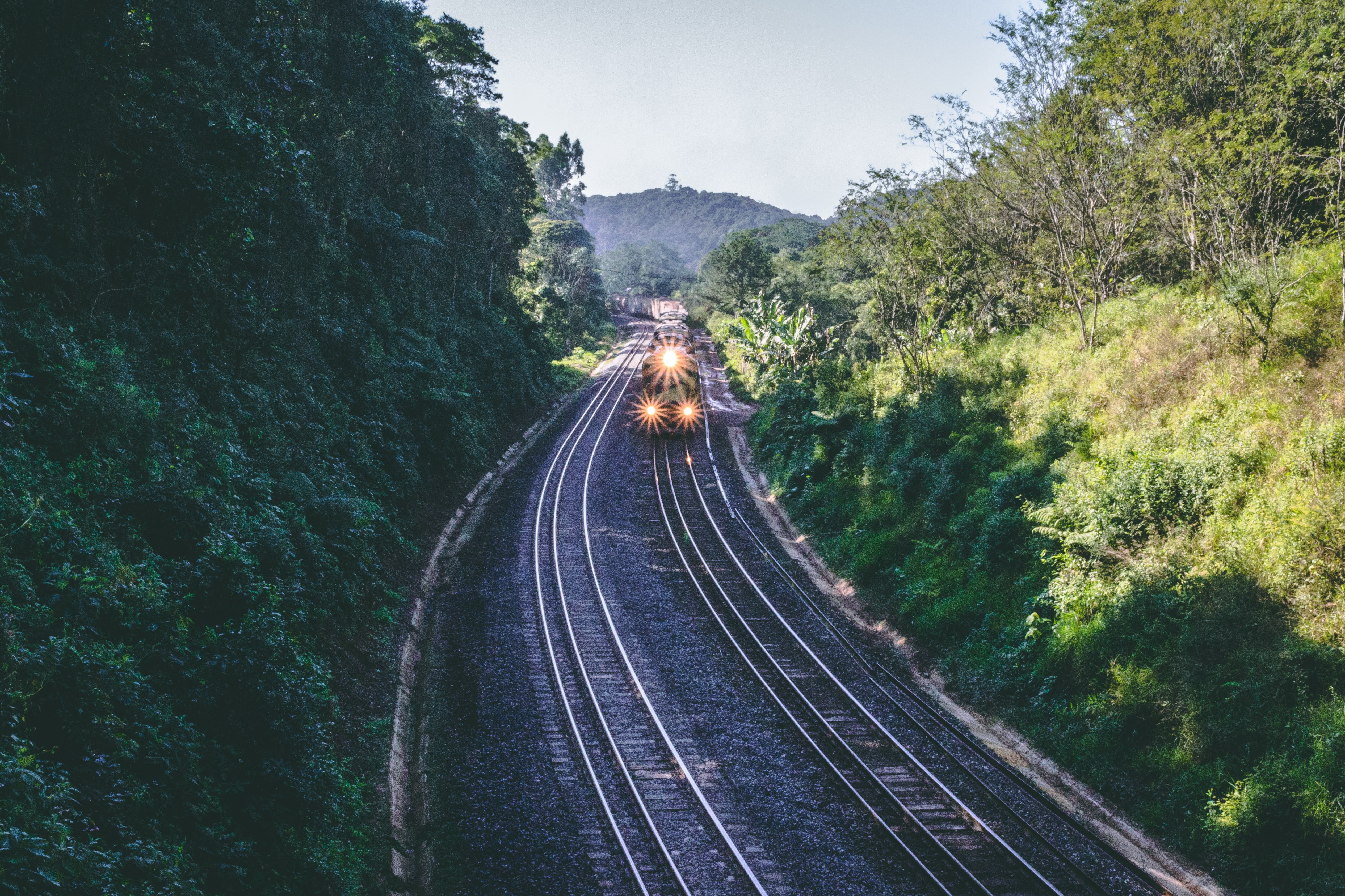 black train moving on the rail with turned-on headlights between green leafed trees at daytime
