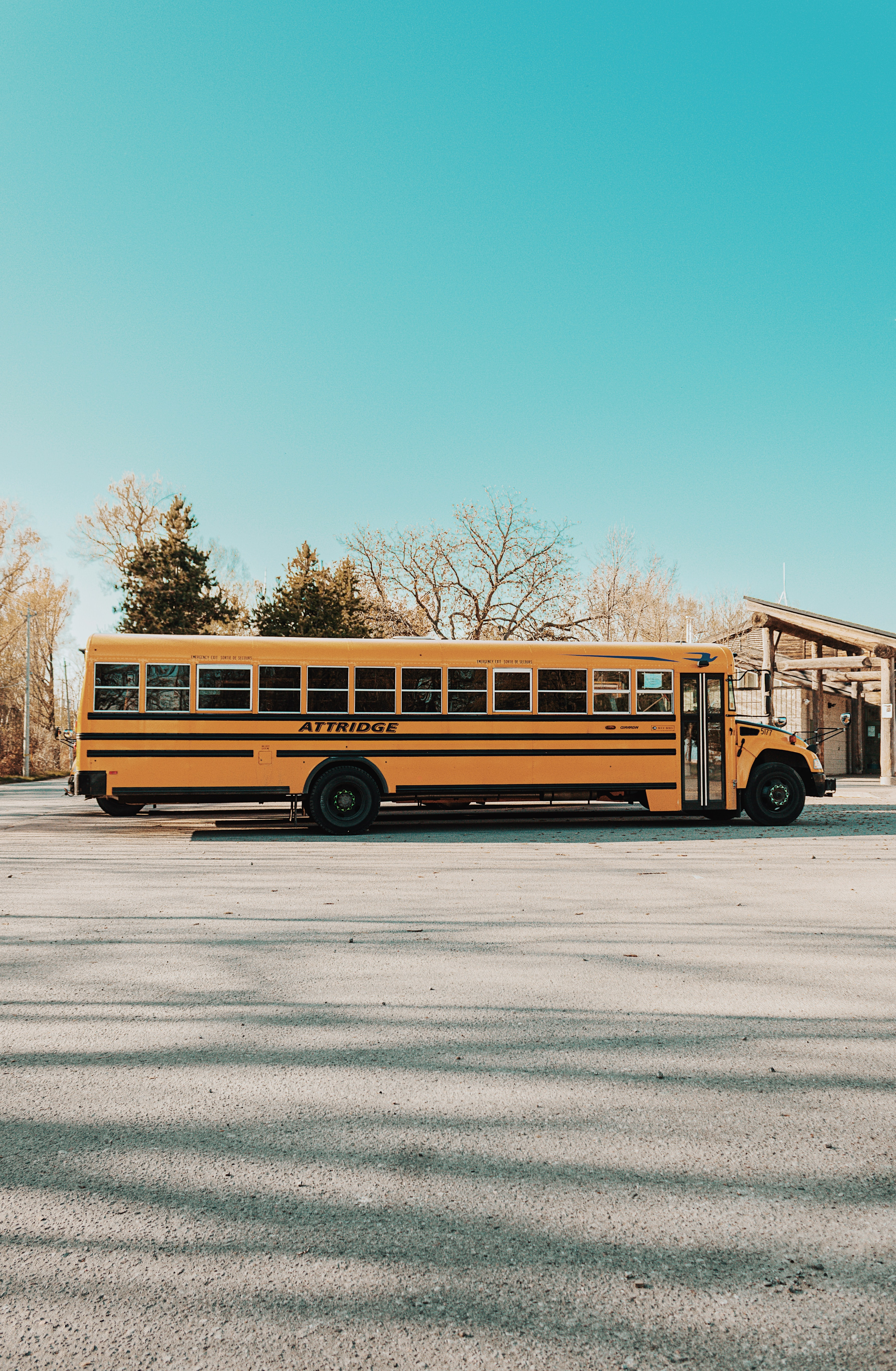 yellow bus on gray road