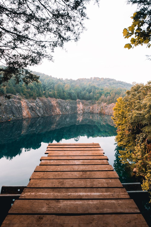 brown wooden footbridge near body of water
