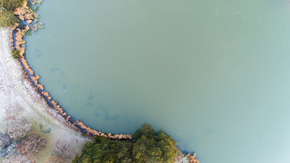 aerial photo of island with trees beside body of water