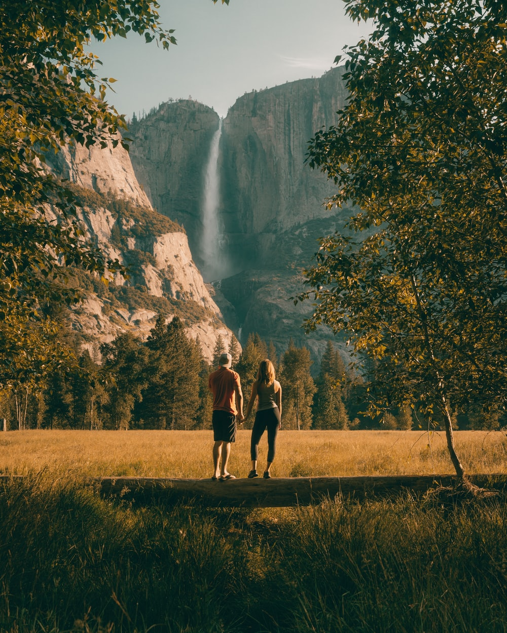 couple standing on tree trunk looking at field and forest