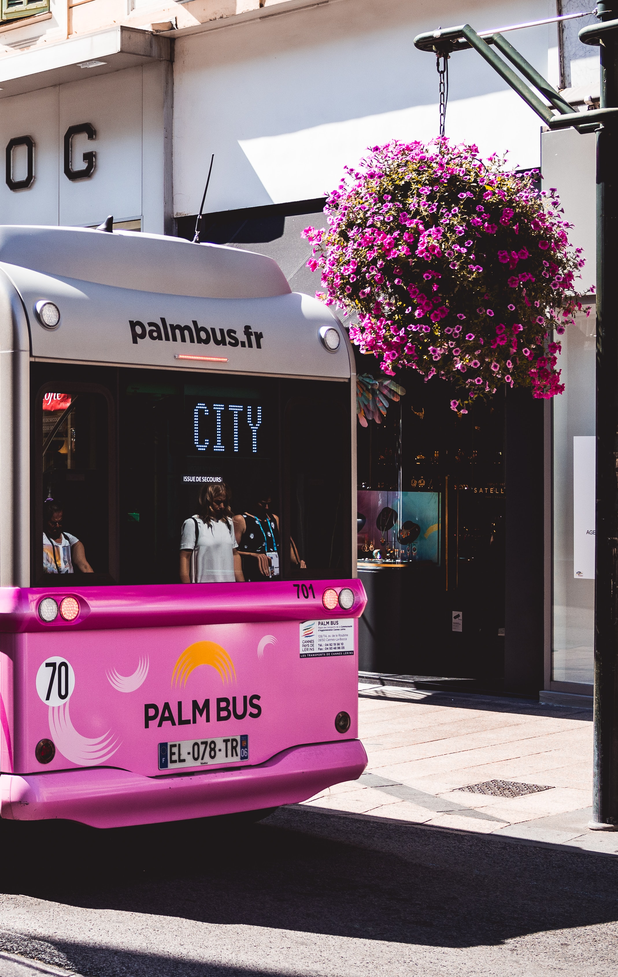 pink and gray Palm Bus on street