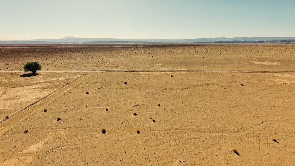 bird's-eye view brown desert