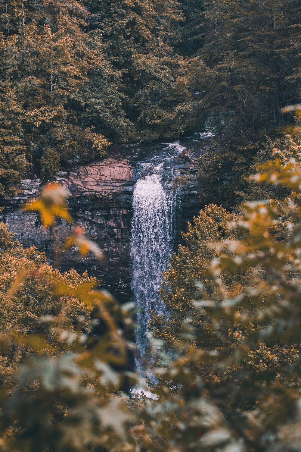 falls surrounded by green leaf trees at daytime