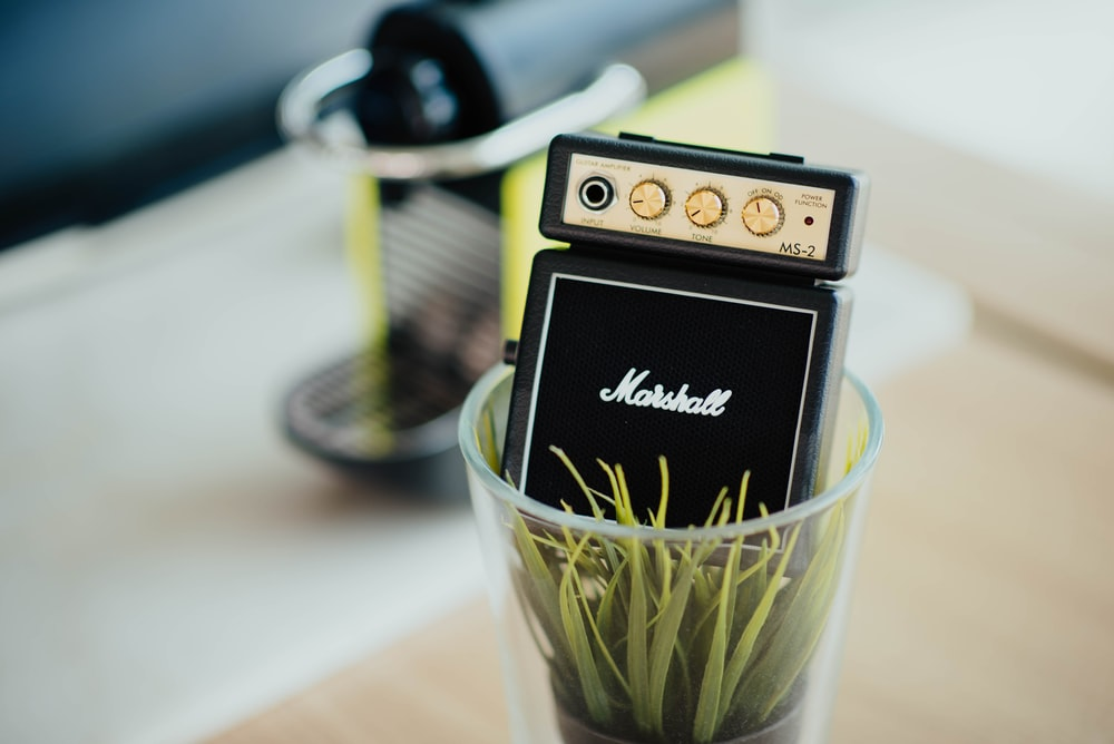 black Marshall electric guitar component