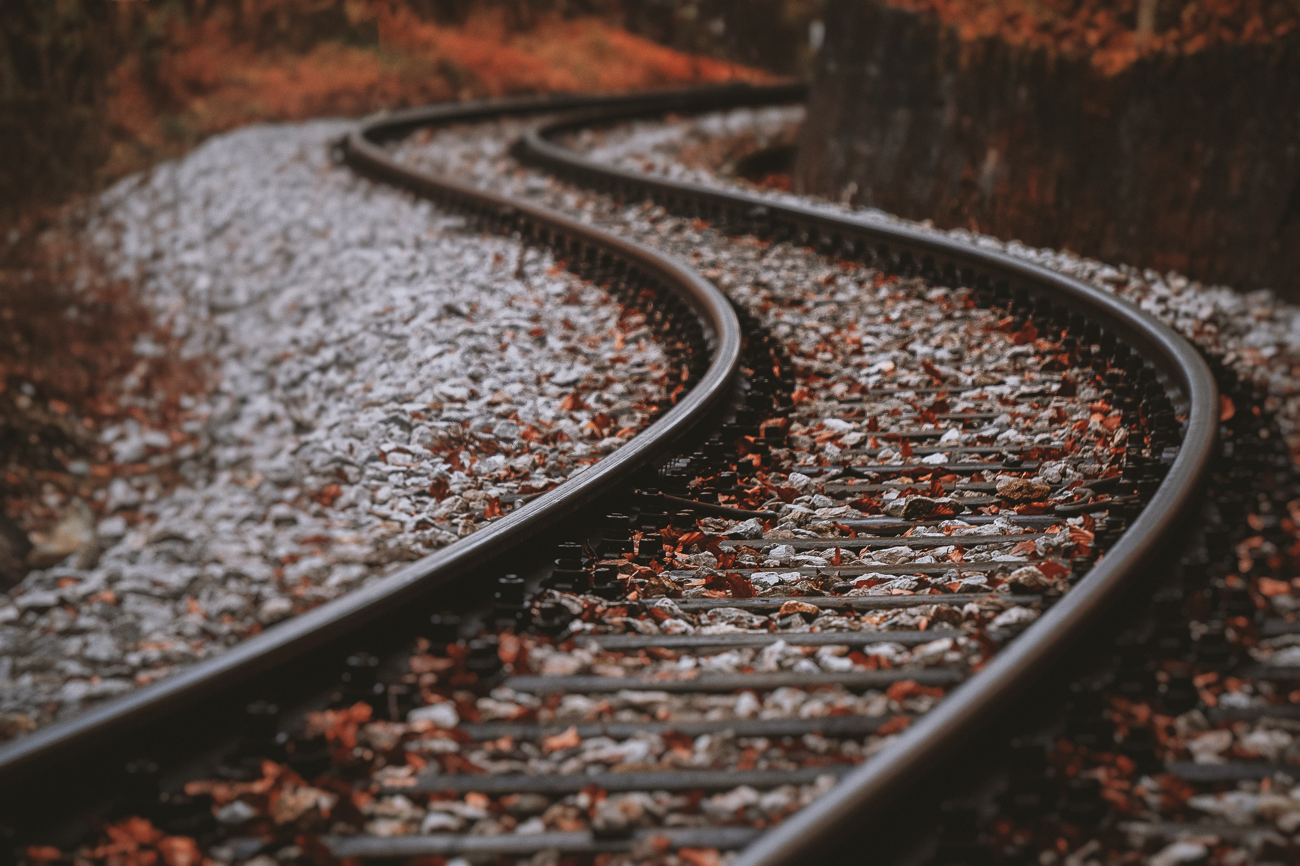 selective focus photography of railroad