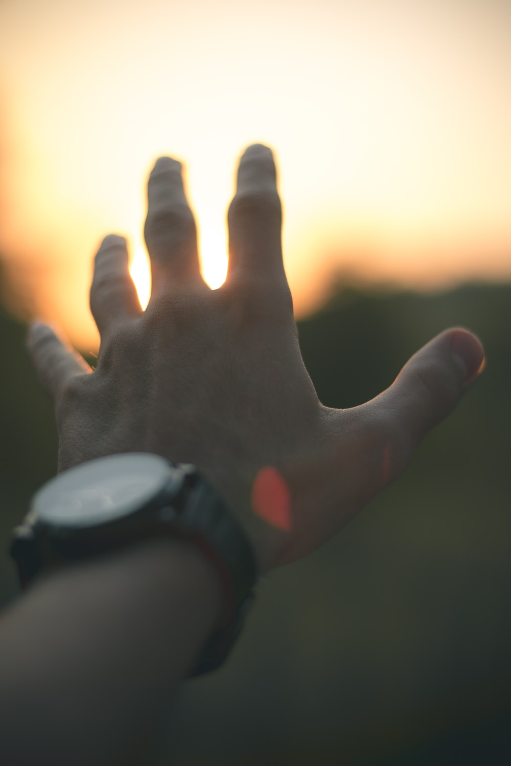 photo of person reaching out his hand
