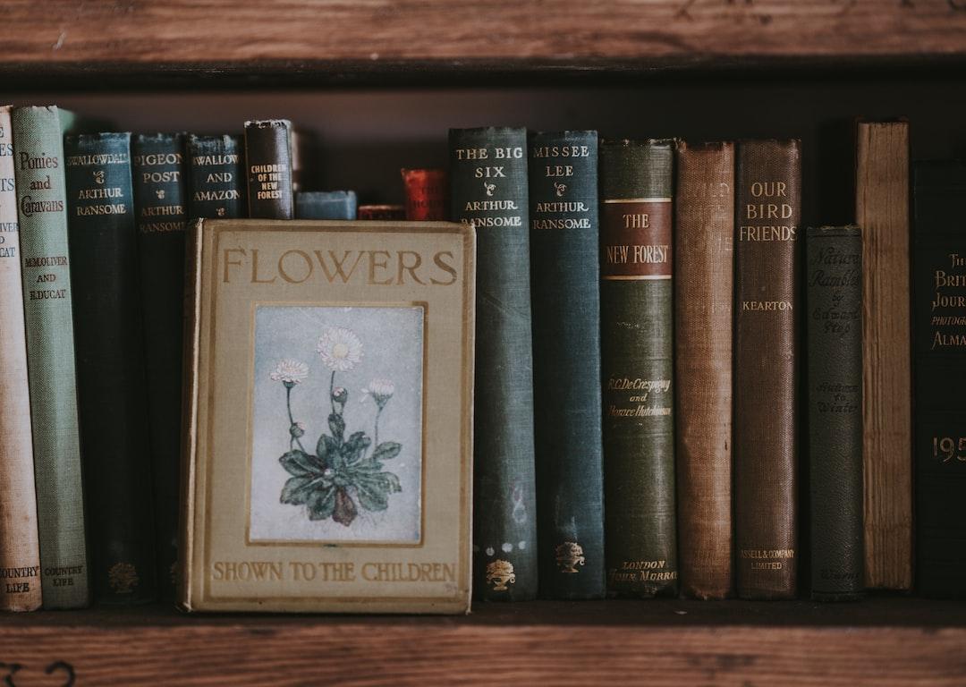 Vintage books in bookcase