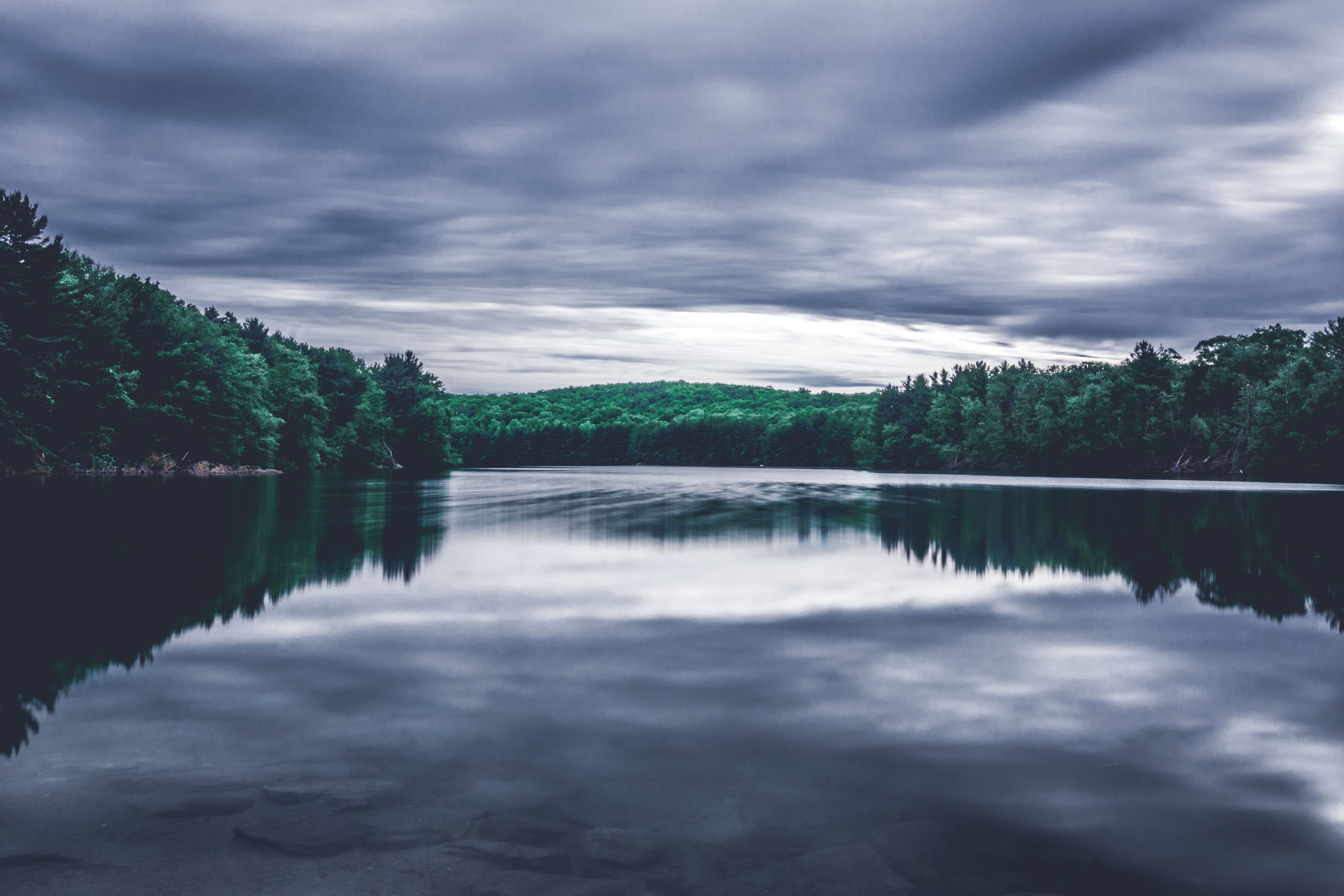 green trees reflected on water