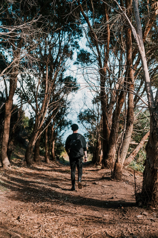 man walking in between of tall trees