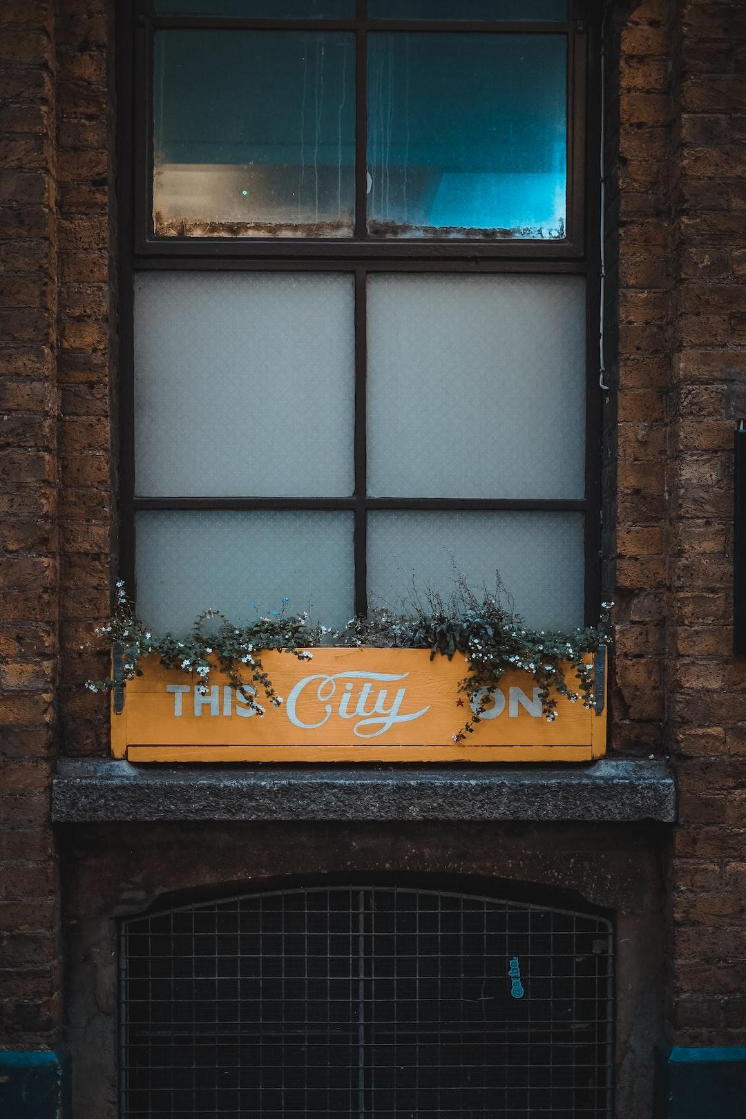 the window ledge of Breakfast Club in Shoreditch.