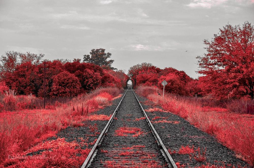 train railroad