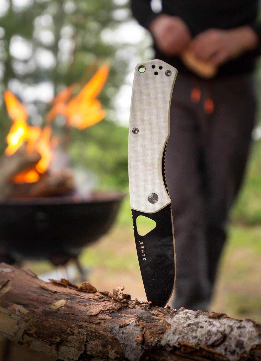 white and black James pocketknife sticking on branch