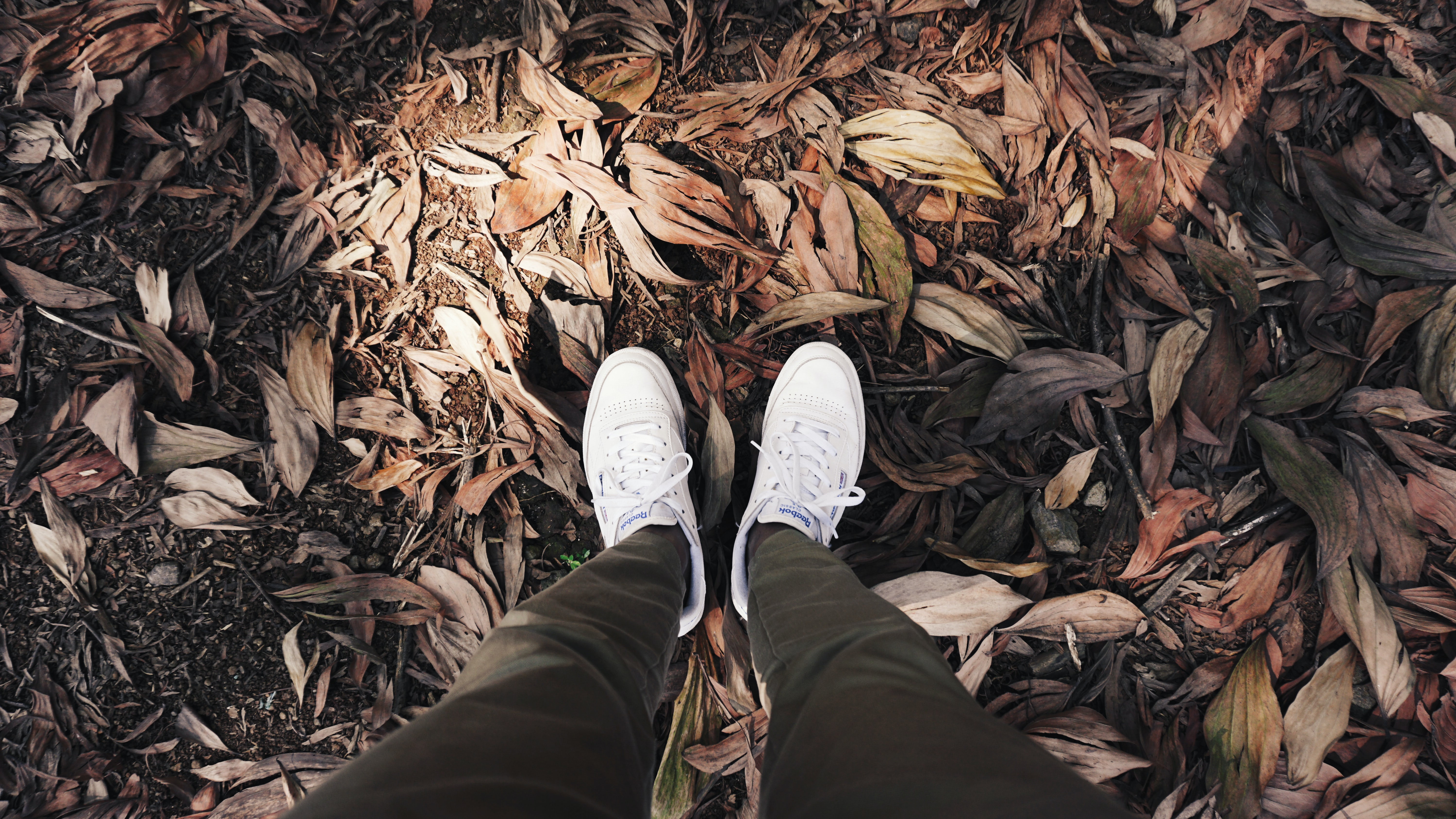 person wearing white sneaker standing on dried leaves surface