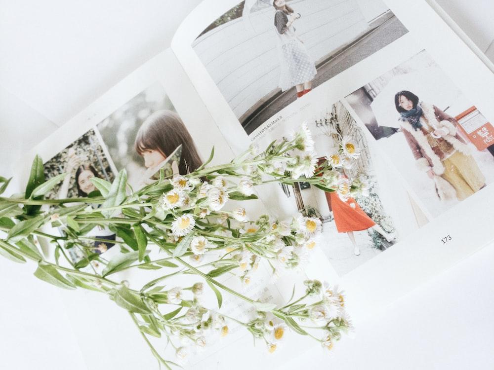 white-and-yellow flowers on photo album