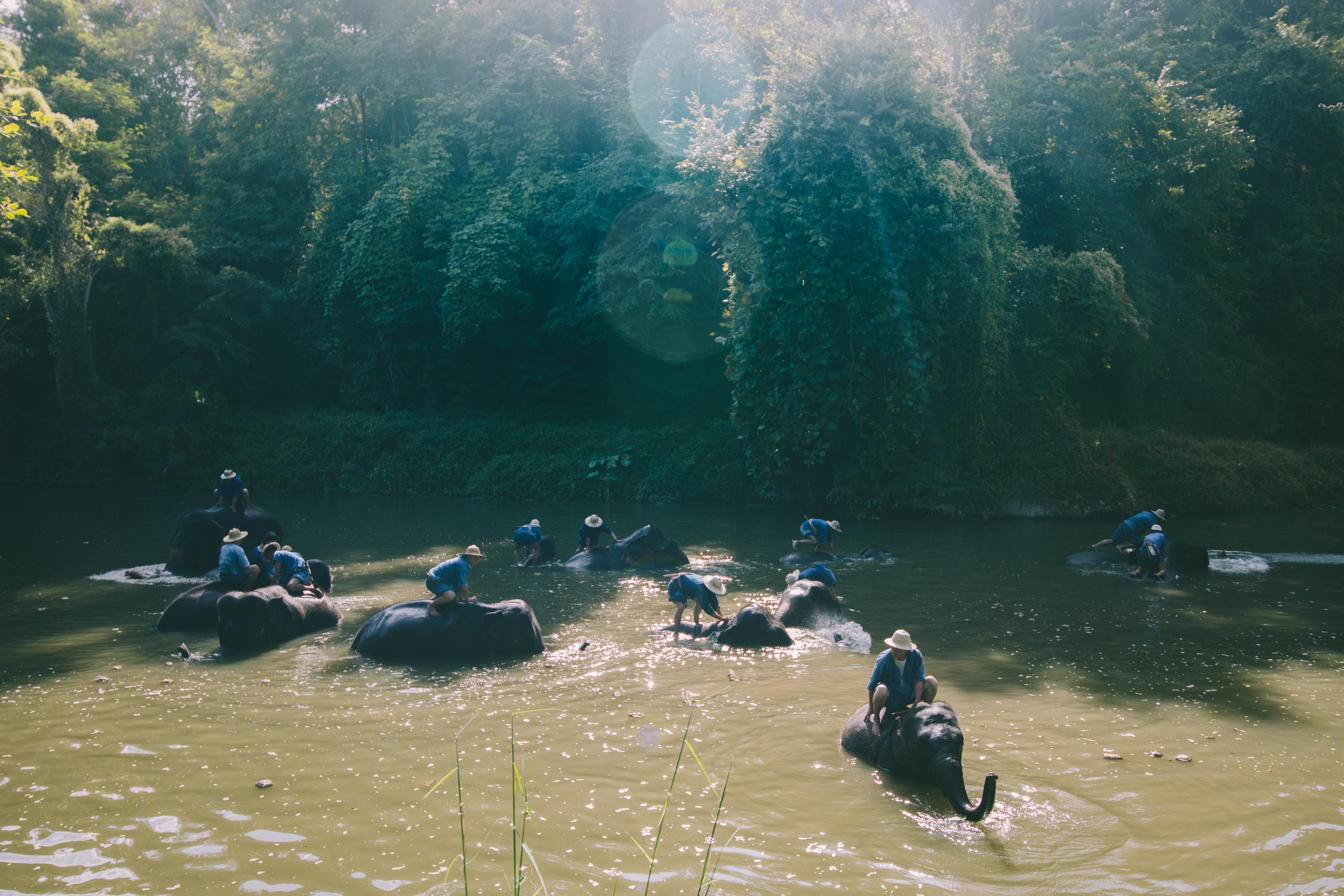 photo of people riding elephants crossing body of water