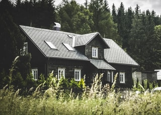 gray wooden house on forest