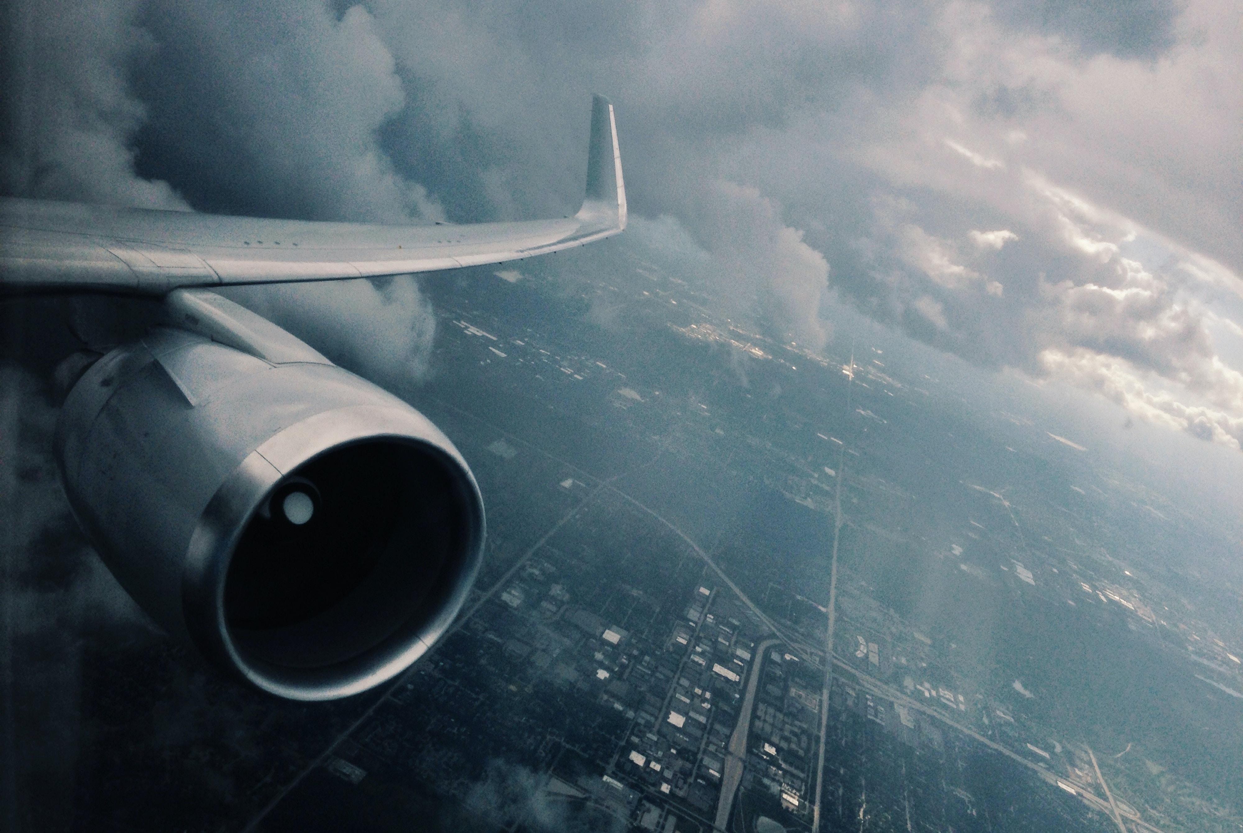 white wing plane