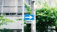 blue and white street signage