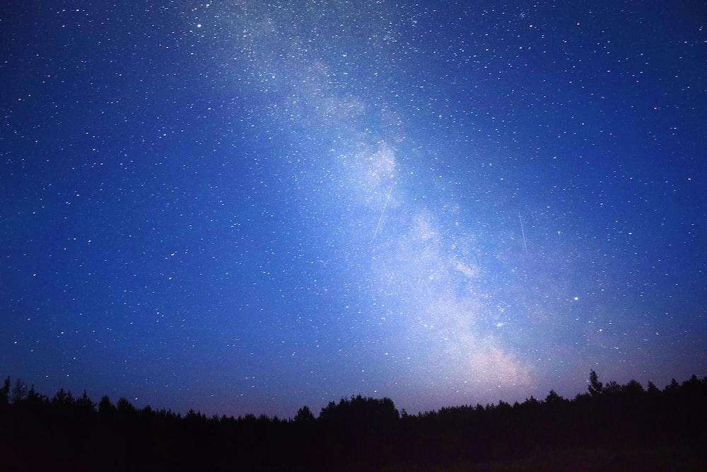 Milky Way Galaxy above trees photography