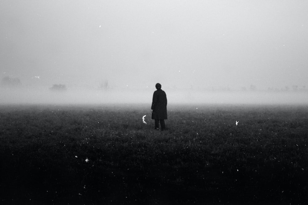 Field, Person, Silhouette And Fog