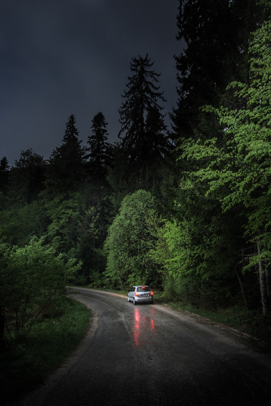 Roaming the hidden, spooky forests at Tara National park in western Serbia, with just enough early moonlight to catch the glimpses of the rare tree species Pančićeva omorika endemic to this mountain. Discover more photos like this > instagram.com/valentinsalja Driving the car > www.instagram.com/jelena.jaranovic