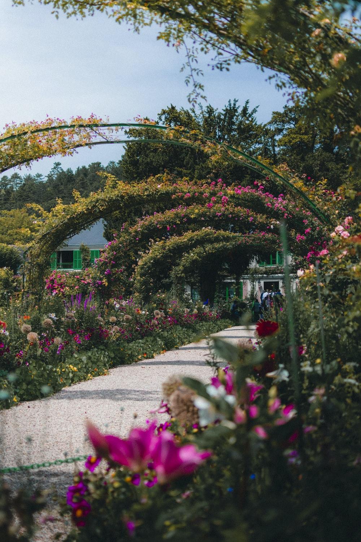 floral garden arch