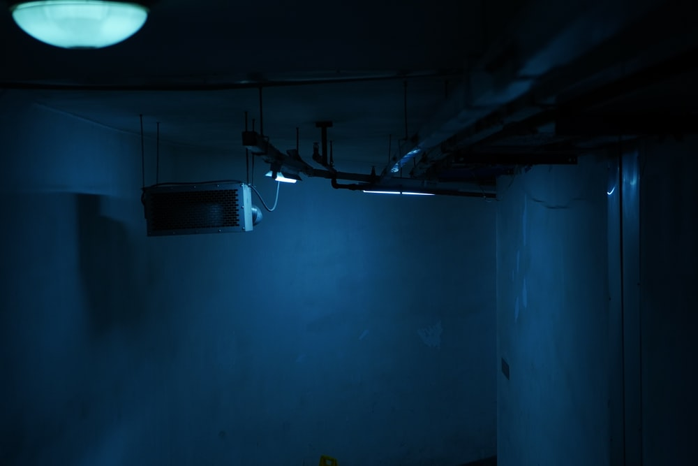 black and blue lights