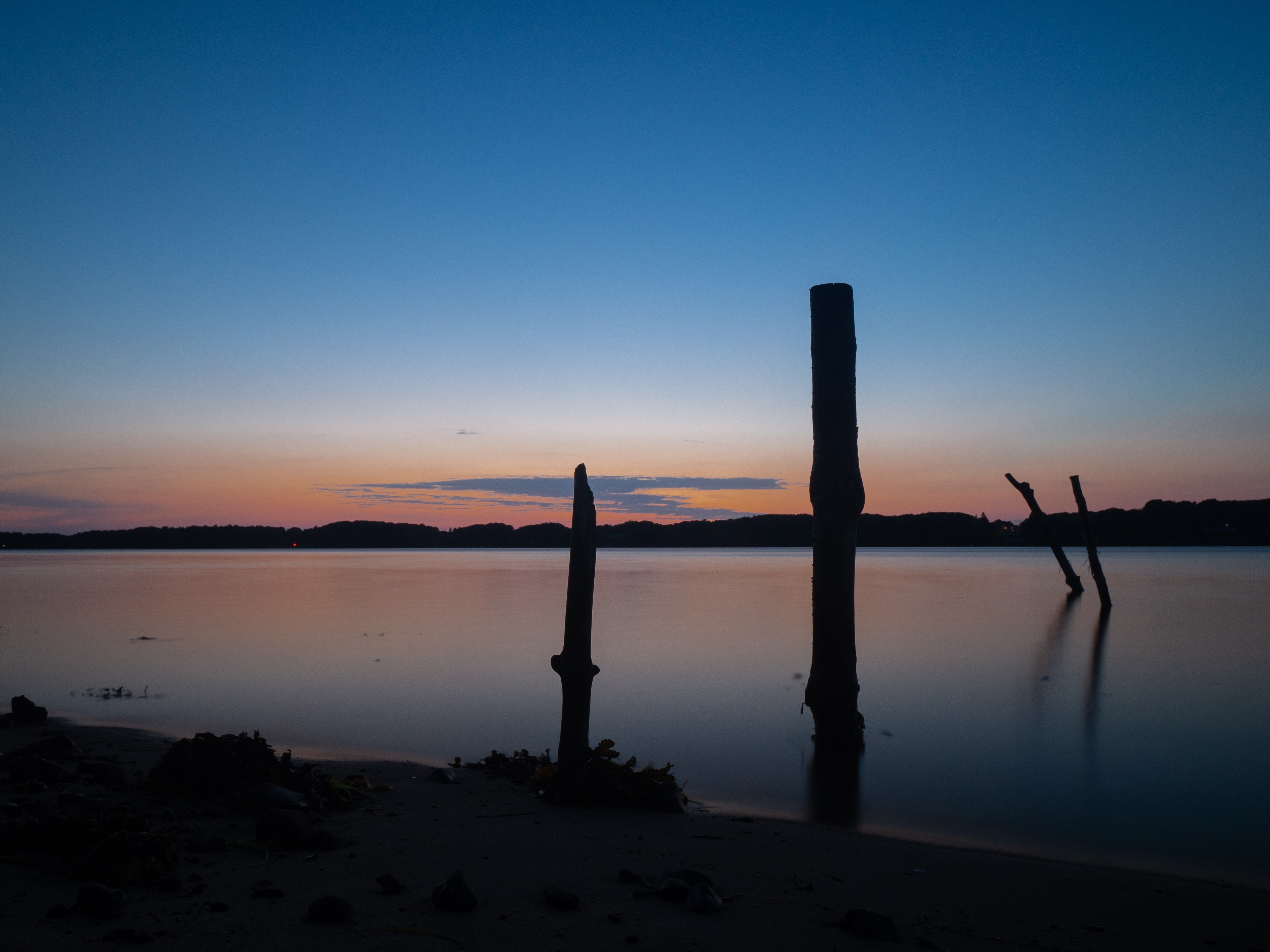 silhouette of wood logs on body of water