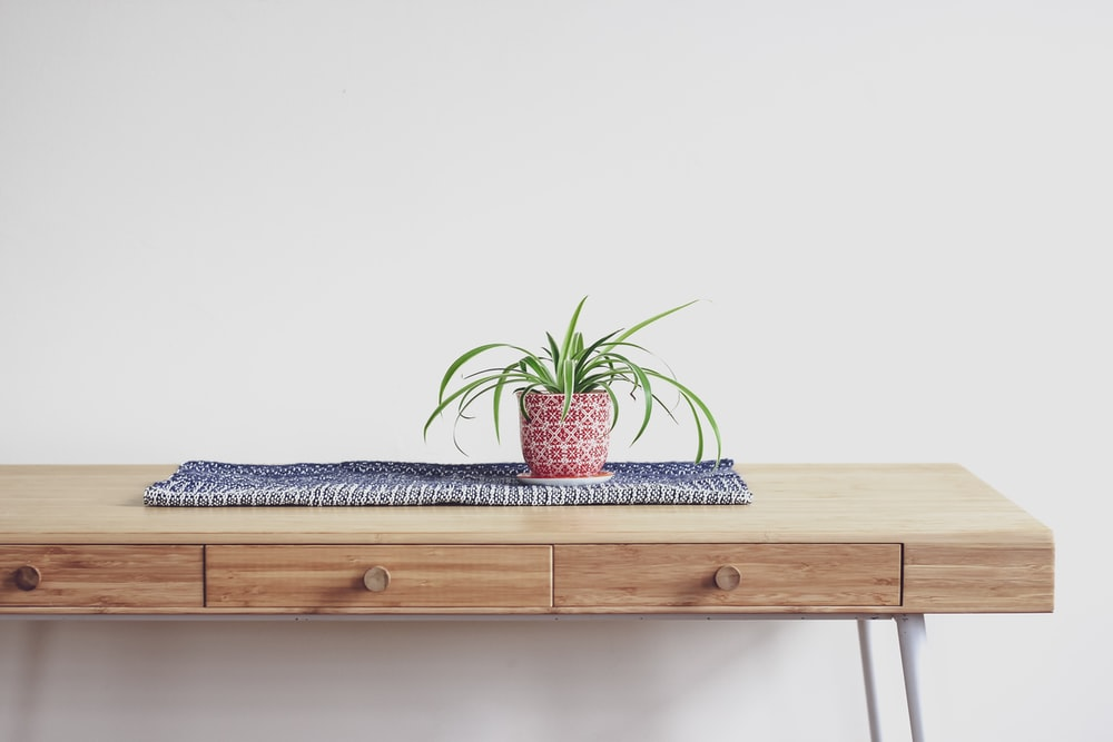 plant on top of beige wooden desk with 2-drawer chest