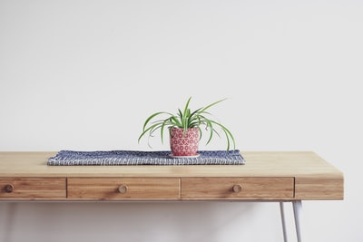 plant on top of beige wooden desk with 2-drawer chest table teams background