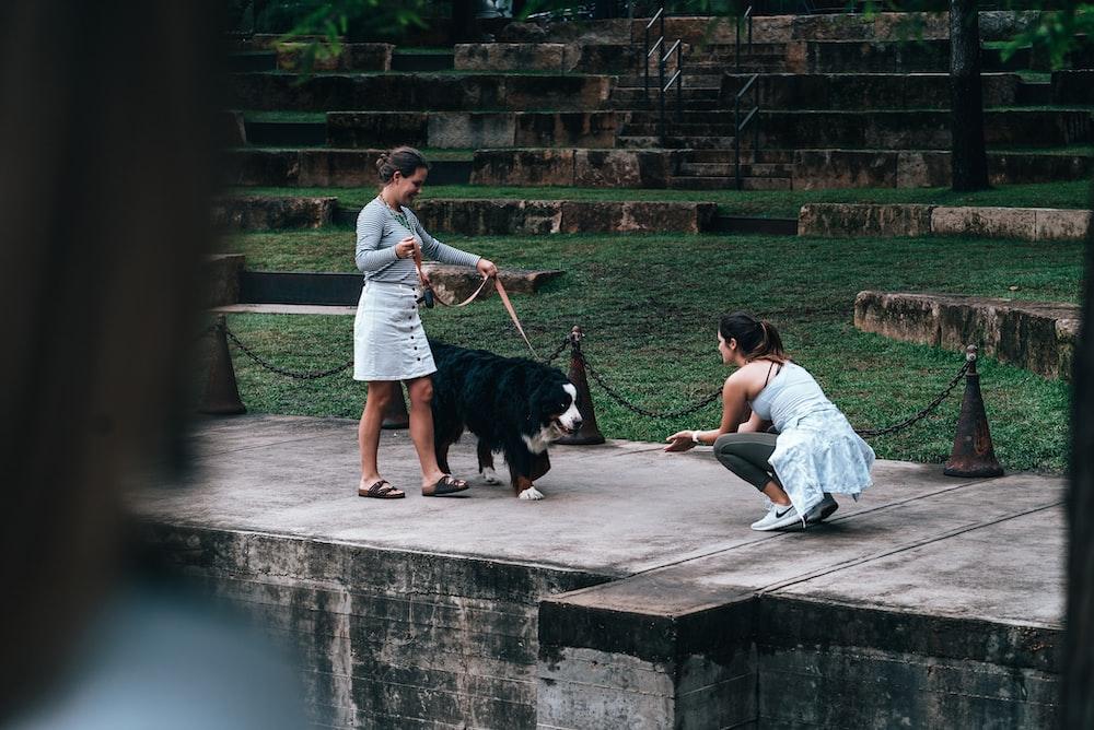 woman walking with dog during daytime