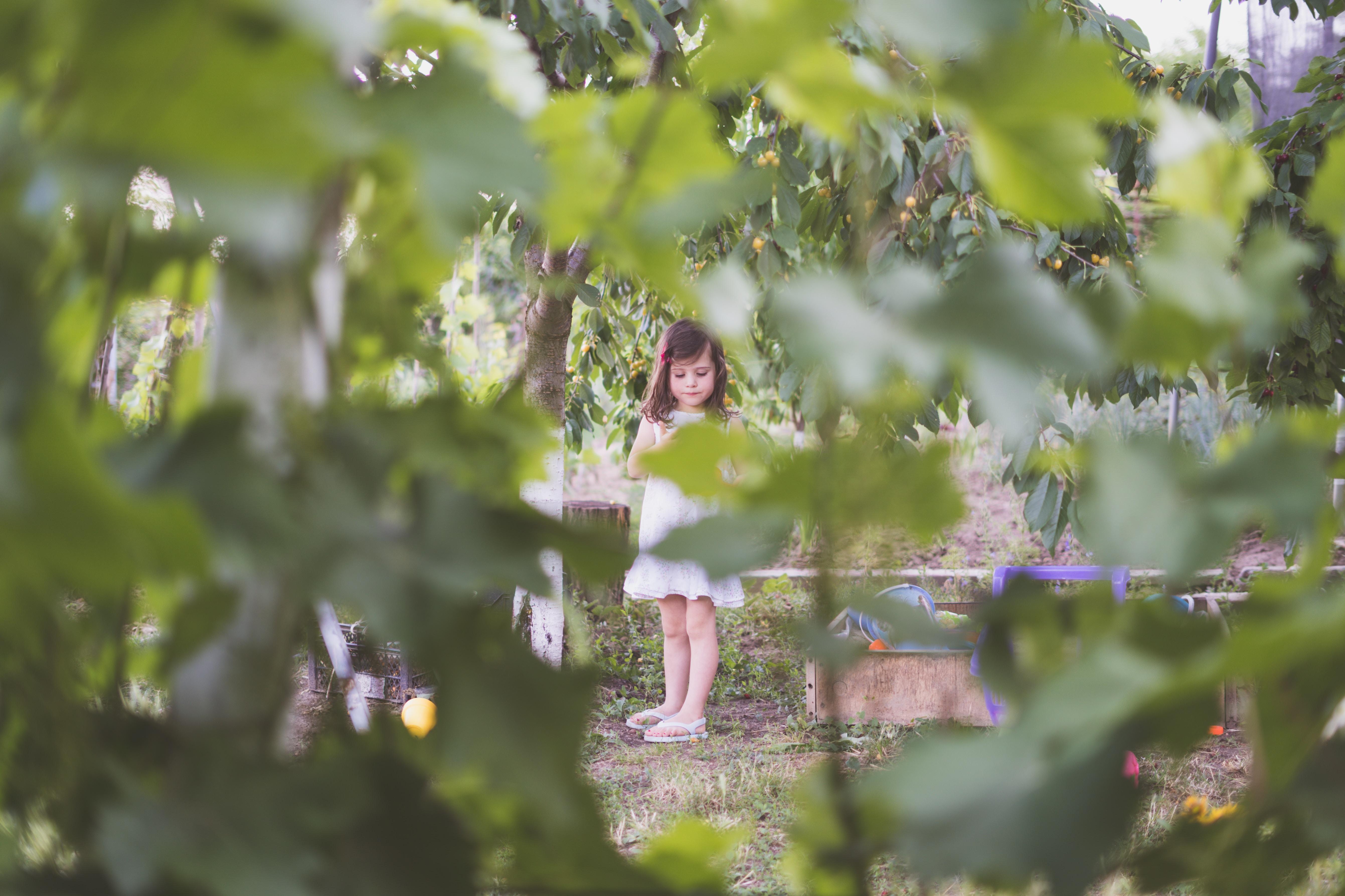 girl standing beside green leafed tre