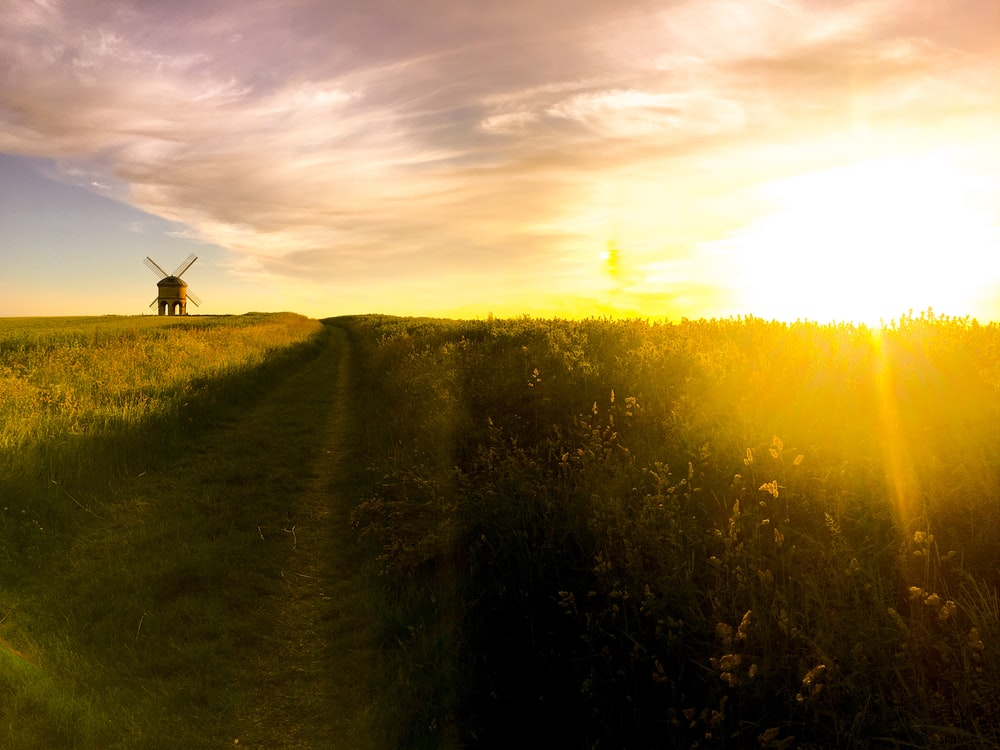 silhouette photo of grass field near windmill during golden hour