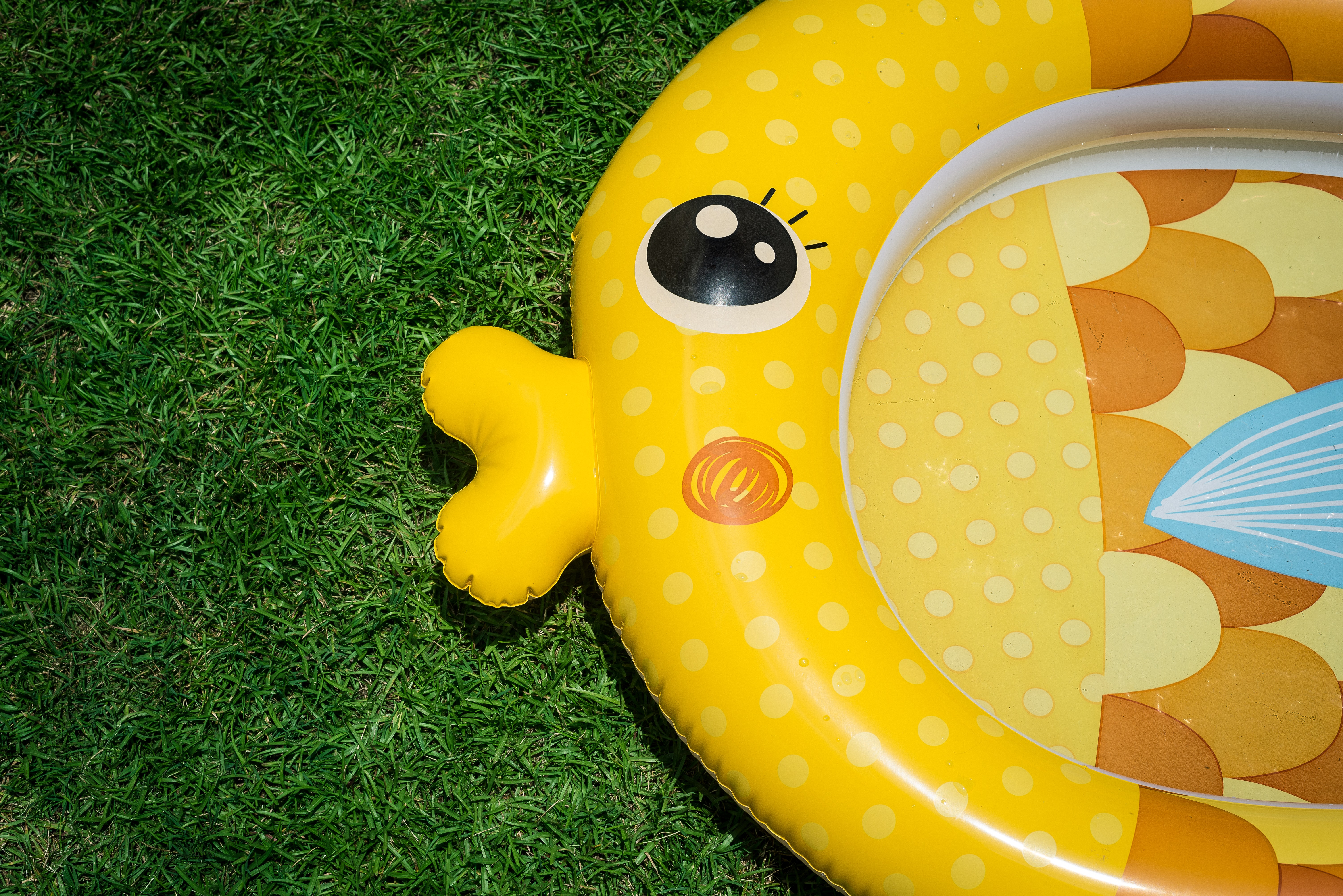 yellow fish inflatable