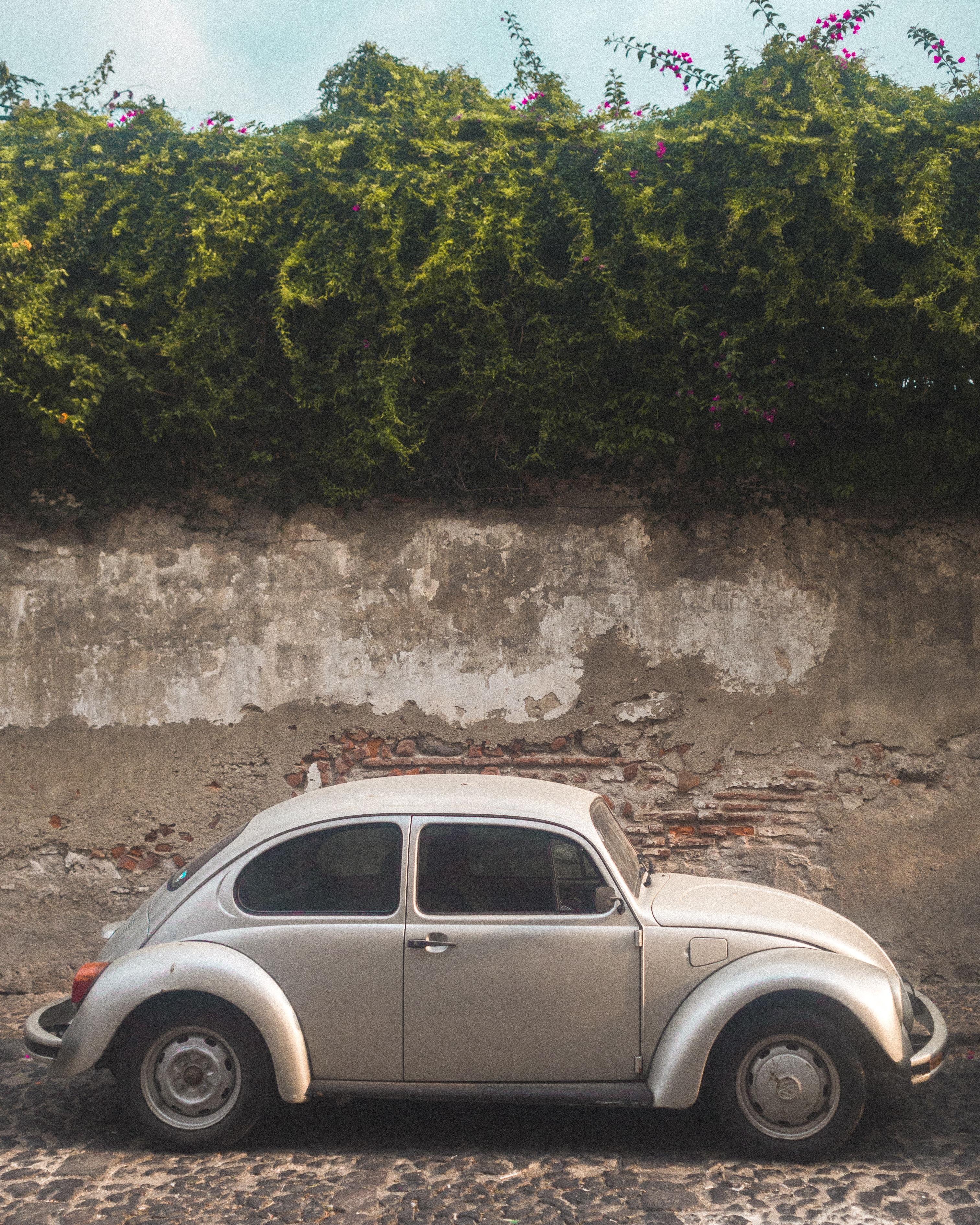 grey Volkswagen Beetle