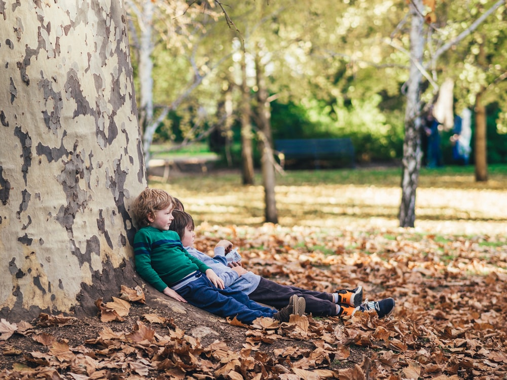 two children sitting on ground with dried leaves