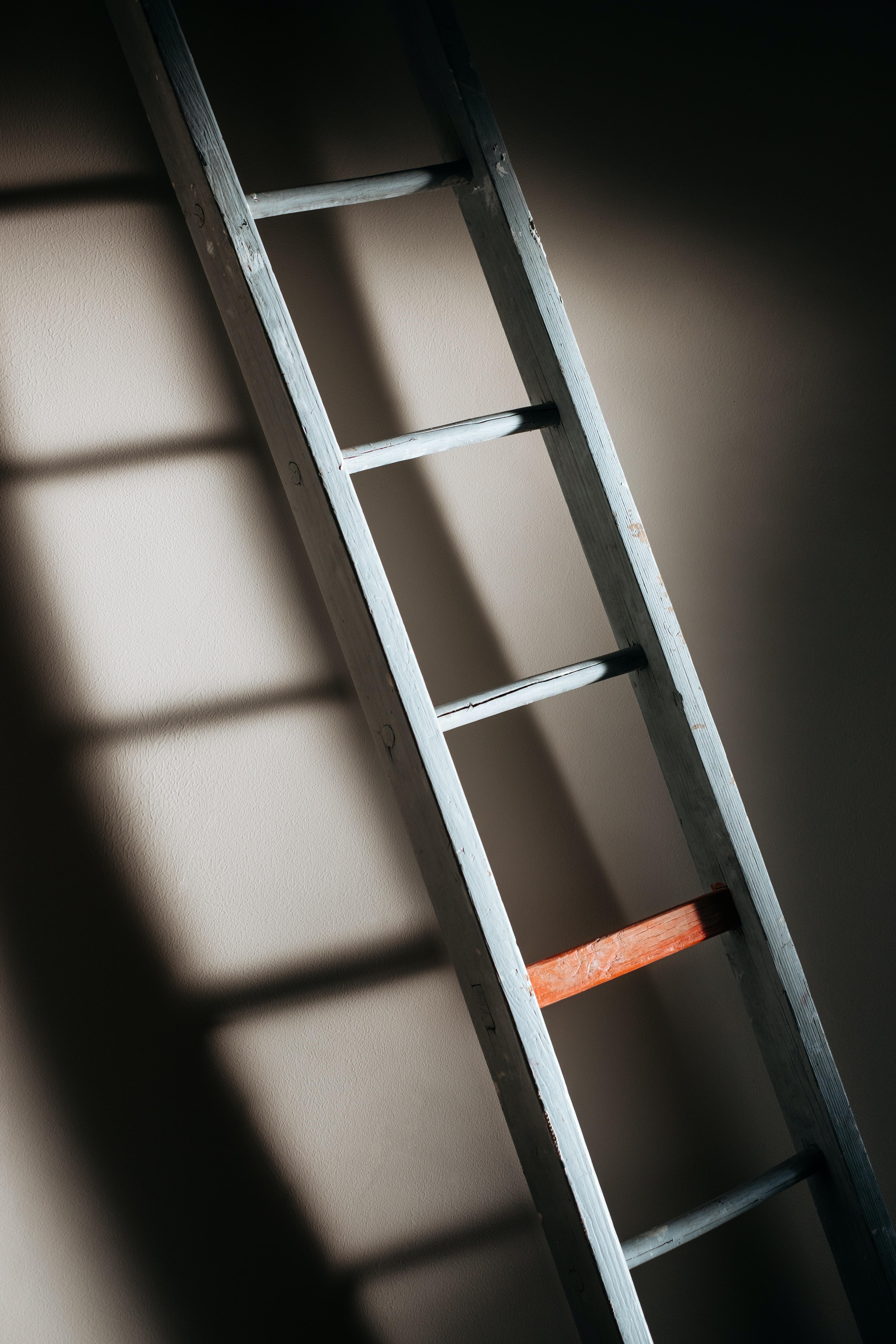 gray ladder