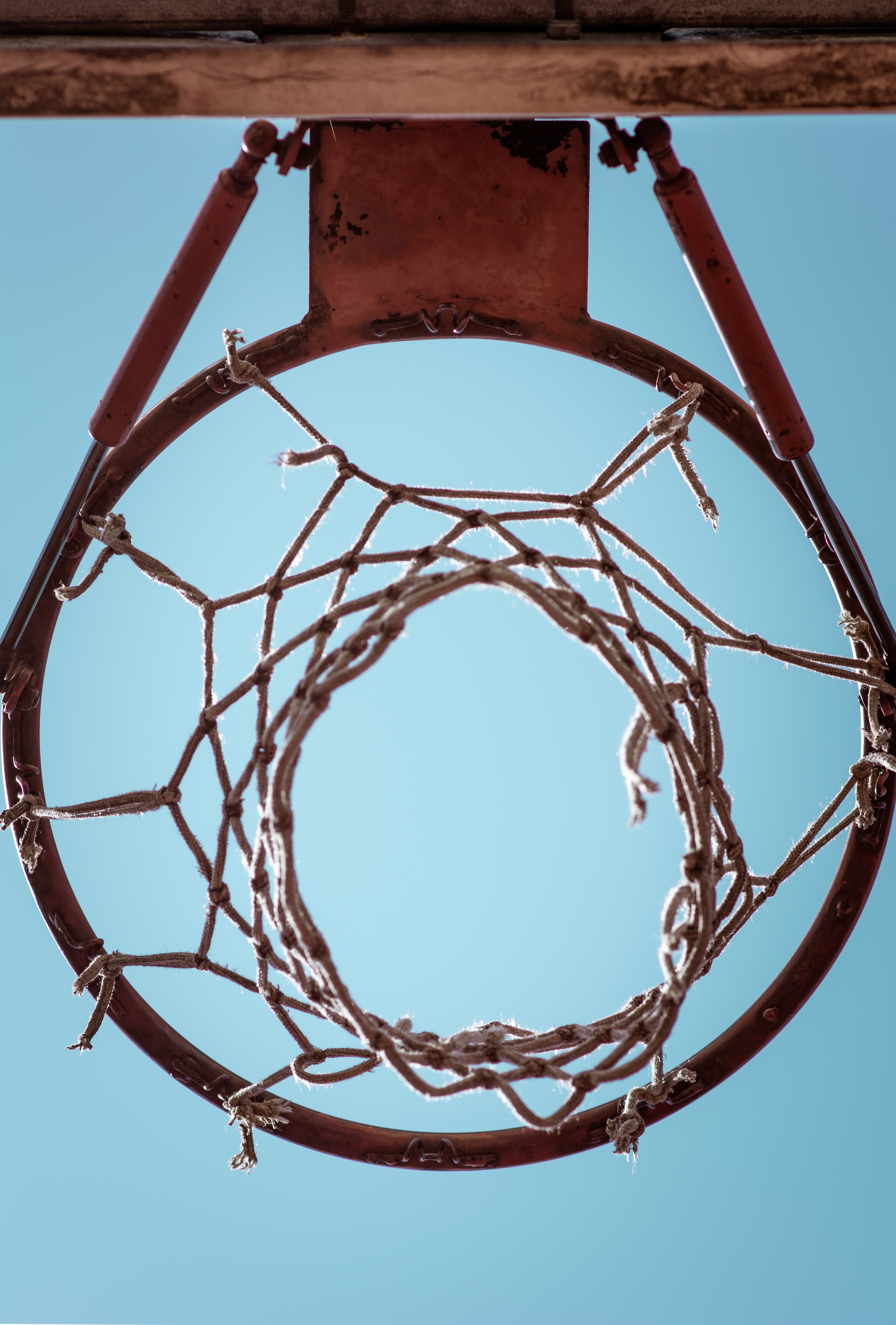 basket ball trophies stories